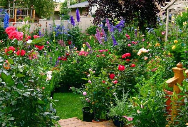 Fresh-Flowers-Idea-For-Minimalist-Garden